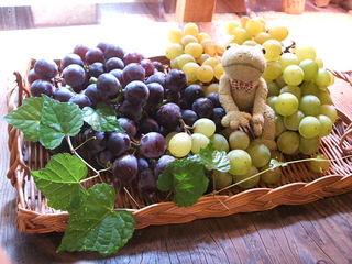grape_1.JPG